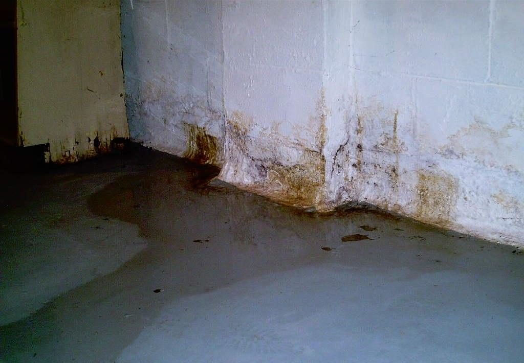 Сыреет стена на лоджии что делать.