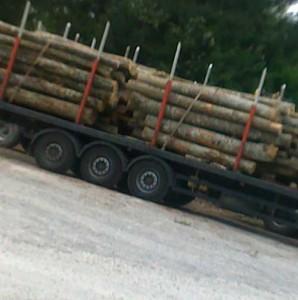 полуприцеп для перевозки леса