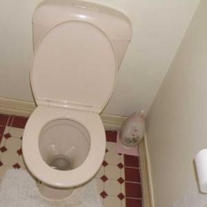 современный ремонт туалета в квартире