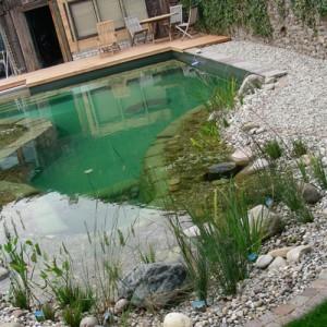 декоративный бассейн для дачи