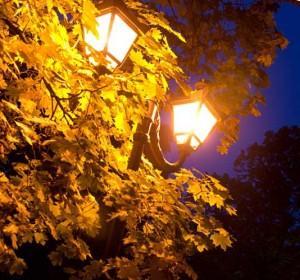 наружное освещение дворовой территории